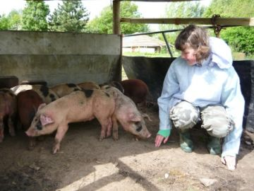 Families on the Farm - Sleepover for Teenagers - September