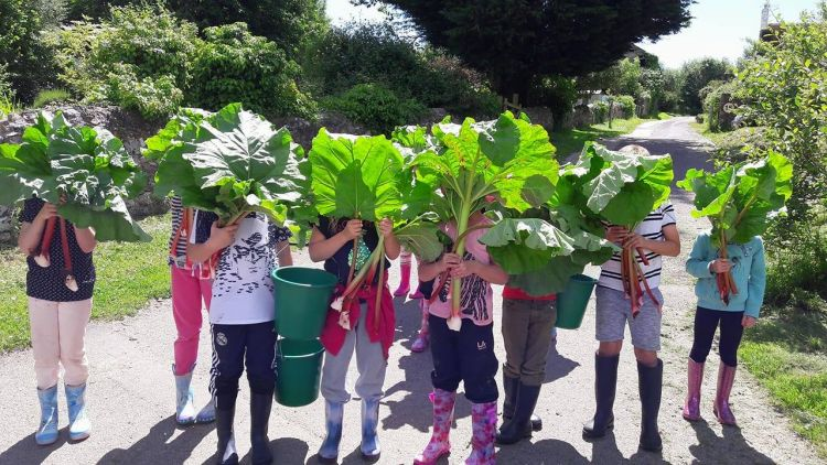 CHildren with rhubarb faces Gallery