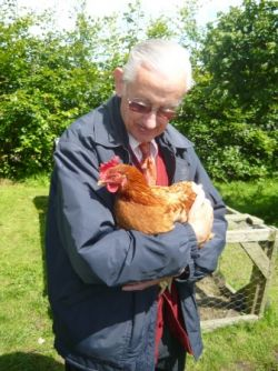 Calm on the Farm - cuddle a chicken Gallery
