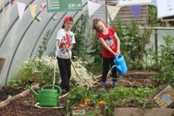 Watering the polytunnels Gallery