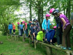 Balance Beam for low ropes Gallery
